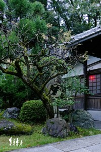 kyoto-fushimi-inari-taisha_011 copie