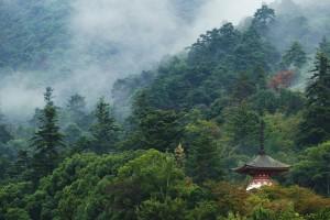 miyajima-paysages-007