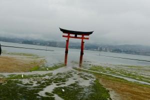 miyajima-paysages-008