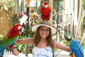 Bali-Bird-Park (33) copie