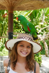 Bali-Bird-Park (52) copie