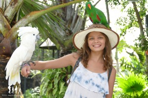 Bali-Bird-Park (71) copie