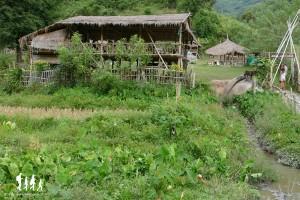 thai-apache-guesthouse (2) copie
