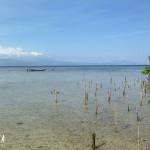 Bali-Lembongan (184)