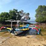 Bali-Lembongan (203)