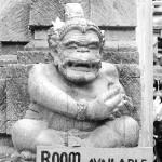 Bali-Ubud (25)