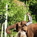 Thailande-Ganesha-Park (135)