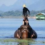 Thailande-Ganesha-Park (179)
