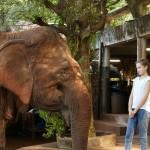 Thailande-Ganesha-Park (21)