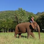 Thailande-Ganesha-Park (318)