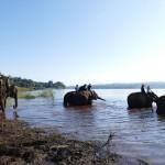 Thailande-Ganesha-Park (326)