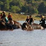 Thailande-Ganesha-Park (361)