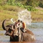 Thailande-Ganesha-Park (379)