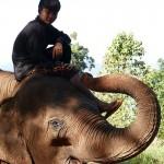 Thailande-Ganesha-Park (71)