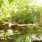 Thaimlande-erawan-watertfall (76)