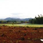 Myanmar-trek-kalaw-inle-J1 (1)