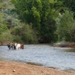 Myanmar-trek-kalaw-inle-J2 (111)