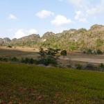 Myanmar-trek-kalaw-inle-J2 (127)