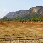 Myanmar-trek-kalaw-inle-J2 (134)