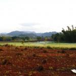 Myanmar-trek-kalaw-inle-J2 (153)
