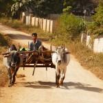 Myanmar-trek-kalaw-inle-J2 (64)