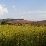 Myanmar-trek-kalaw-inle-J3 (22)