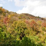 Myanmar-trek-kalaw-inle-J3 (36)