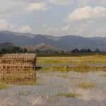 Myanmar-trek-kalaw-inle-J3 (48)