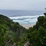 Australie-roadtrip-2501-Ballina-Byron_Bay-Nimbin (4)