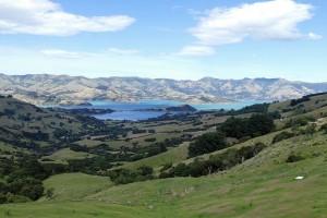 nouvelle-zelande-roadtrip-akaroa-lac-tekapo (9)