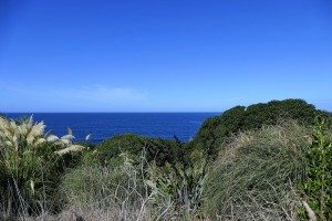 nouvelle-zelande-roadtrip-moeraki-bolders (5)