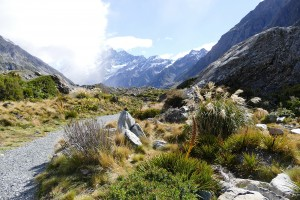 nouvelle-zelande-roadtrip-mount-cook-clay-cliffs-moeraki-bolders (9)