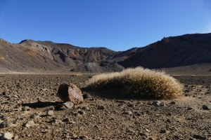 nouvelle-zelande-roadtrip-tongariro-alping-crossing (16)