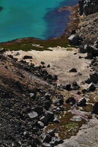 nouvelle-zelande-roadtrip-tongariro-alping-crossing (35)
