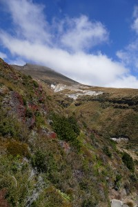 nouvelle-zelande-roadtrip-tongariro-alping-crossing (45)
