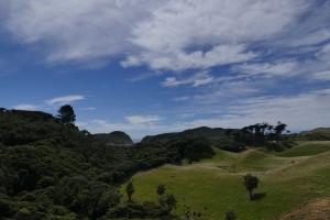 nouvelle-zelande-roadtrip-wharariki-beach (29)