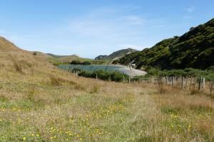 nouvelle-zelande-roadtrip-wharariki-beach (7)