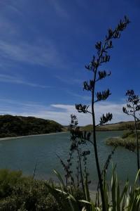 nouvelle-zelande-roadtrip-wharariki-beach (9)