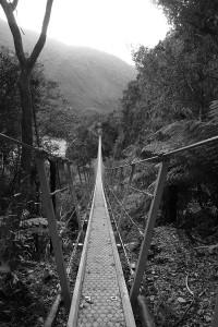 nouvelle-zelande-roadtrip-franz-josef-punakaiki (4)